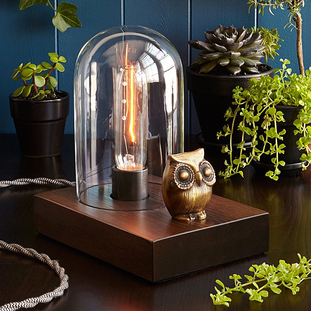 Mr. Owl Touch Lamp