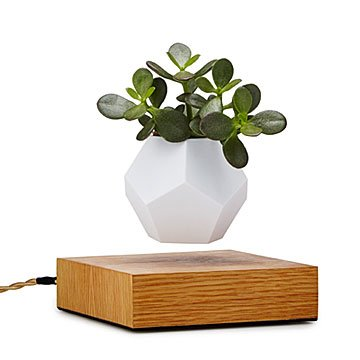 The Levitating Planter