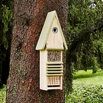 Bird, Bee & Bug Hotel